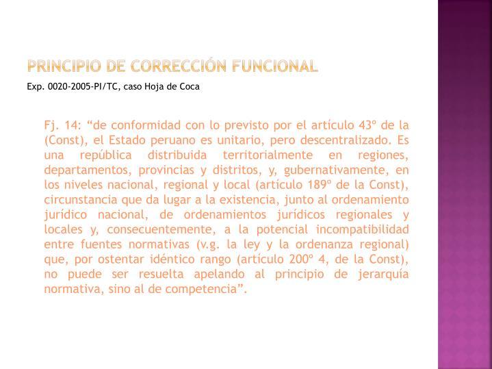 Principio de corrección funcional