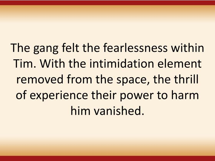 The gang felt the fearlessness within Tim. With the intimidation element removed from the space, the thrill of experience their power to harm
