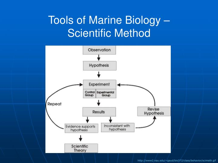 Tools of Marine Biology –