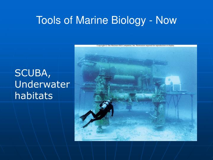 Tools of Marine Biology - Now