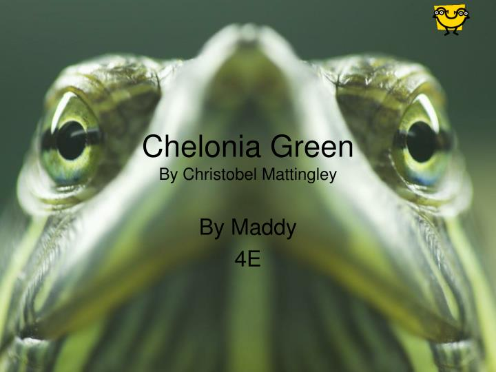 chelonia green by christobel mattingley n.