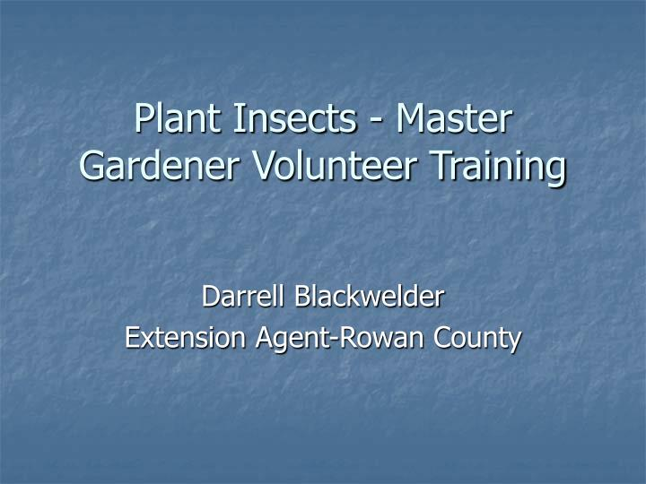 plant insects master gardener volunteer training n.