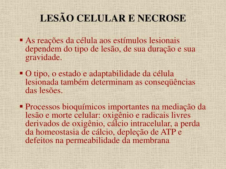 LESÃO CELULAR E NECROSE