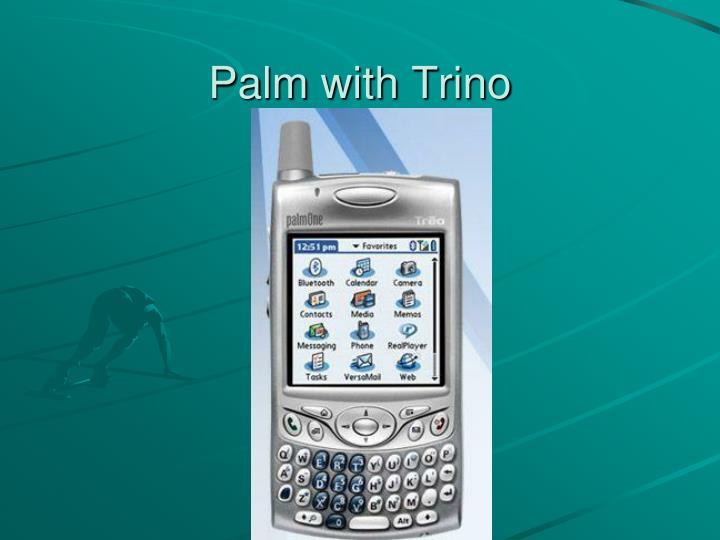 Palm with Trino