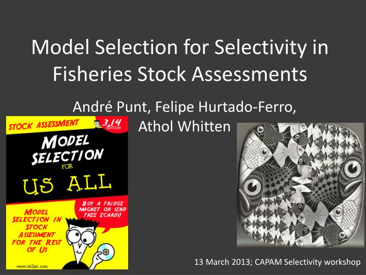 model selection for selectivity in fisheries stock assessments n.
