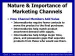 nature importance of marketing channels1