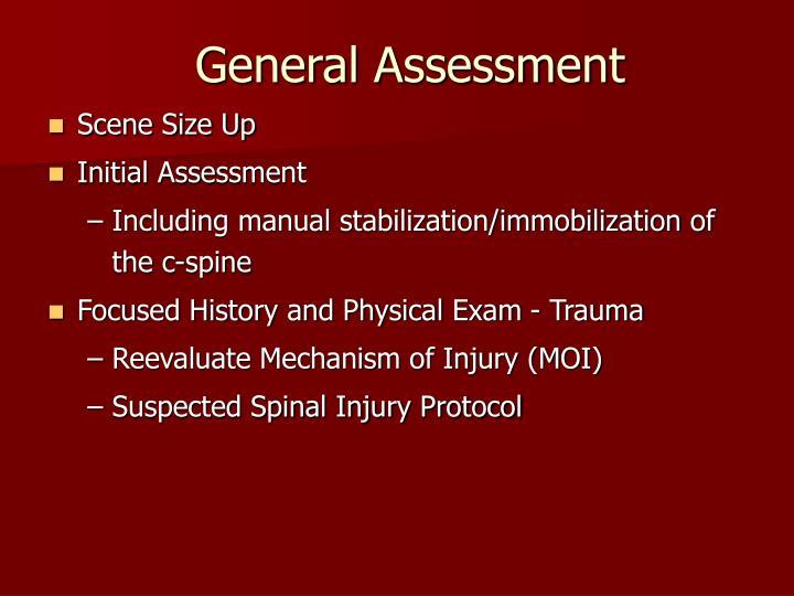 General Assessment