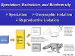 speciation extinction and biodiversity