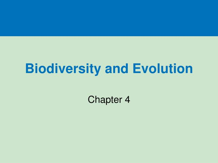 biodiversity and evolution n.
