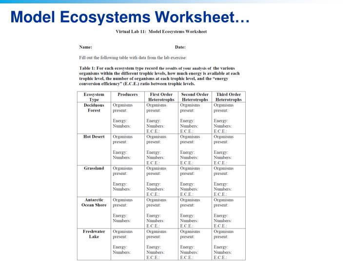 Model Ecosystems