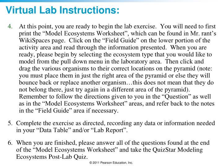 Virtual Lab Instructions: