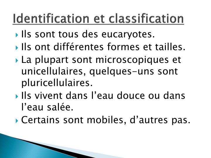 Identification et classification