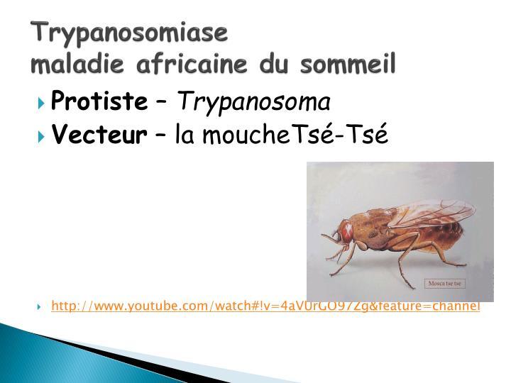 Trypanosomiase