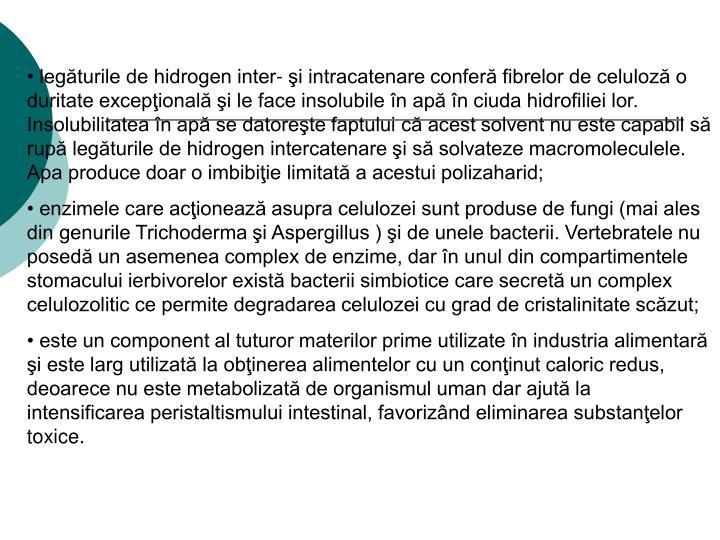 legăturile de hidrogen inter- şi intracatenare conferă fibrelor de celuloză o duritate excepţională şi le face insolubile în apă în ciuda hidrofiliei lor. Insolubilitatea în apă se datoreşte faptului că acest solvent nu este capabil să rupă legăturile de hidrogen intercatenare şi să solvateze macromoleculele. Apa produce doar o imbibiţie limitată a acestui polizaharid;