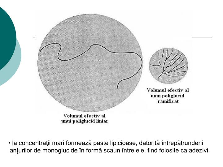 la concentraţii mari formează paste lipicioase, datorită întrepătrunderii lanţurilor de monoglucide în formă scaun între ele, find folosite ca adezivi.