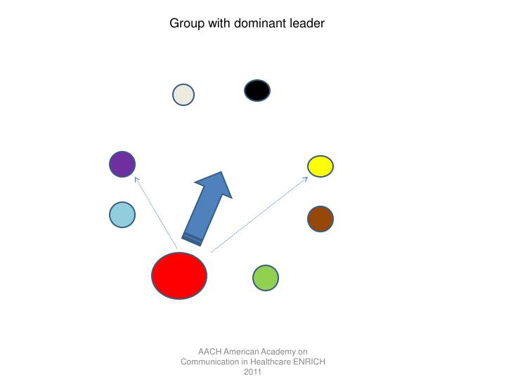 Group with dominant leader