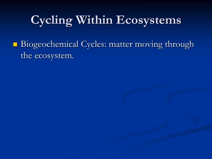 Cycling Within Ecosystems