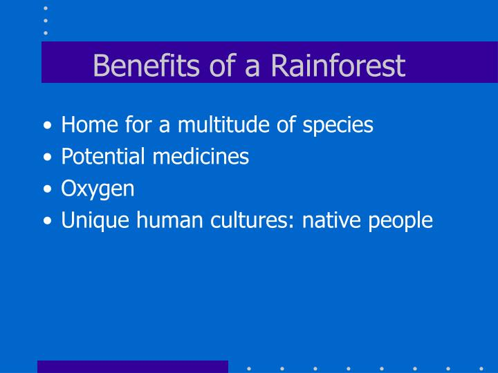 Benefits of a Rainforest