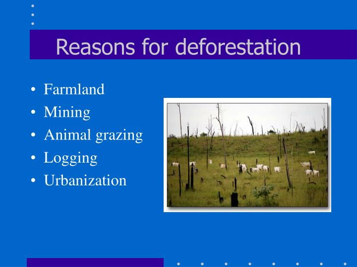 Reasons for deforestation