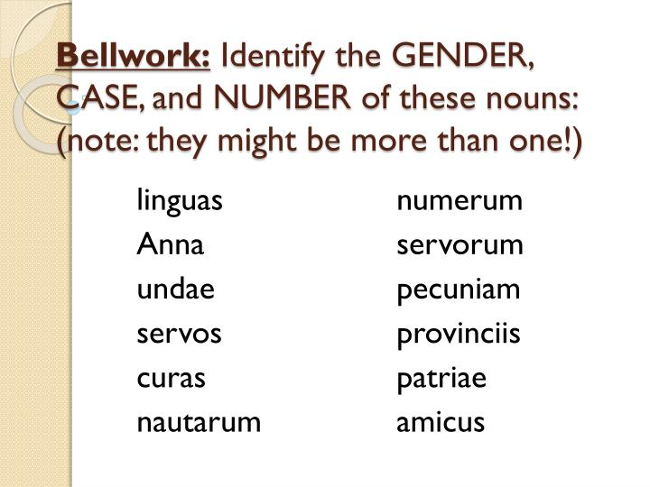bellwork identify the gender case and number of these nouns note they might be more than one n.