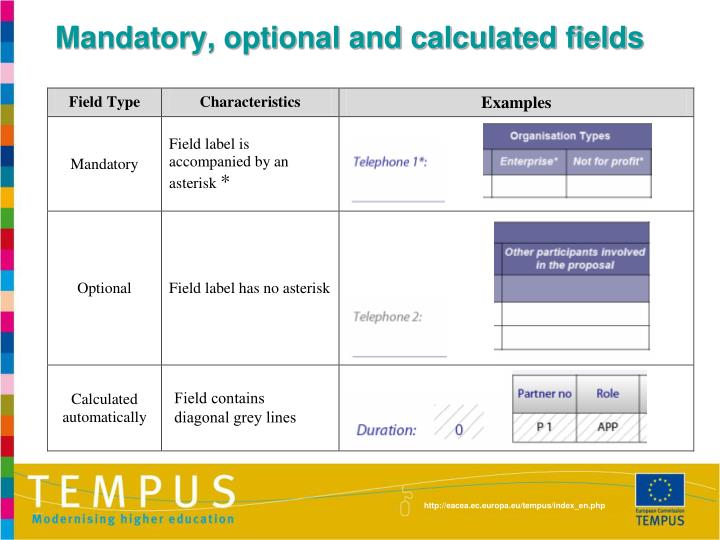 Mandatory, optional and calculated fields