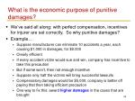 what is the economic purpose of punitive damages