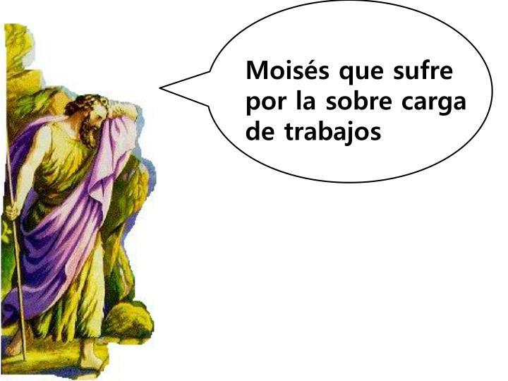Moisés que sufre