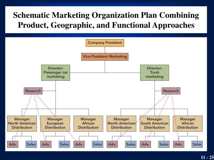 Schematic Marketing Organization Plan Combining Product, Geographic, and Functional Approaches
