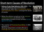 short term causes of revolution