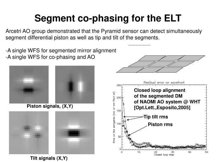 Segment co-phasing for the ELT