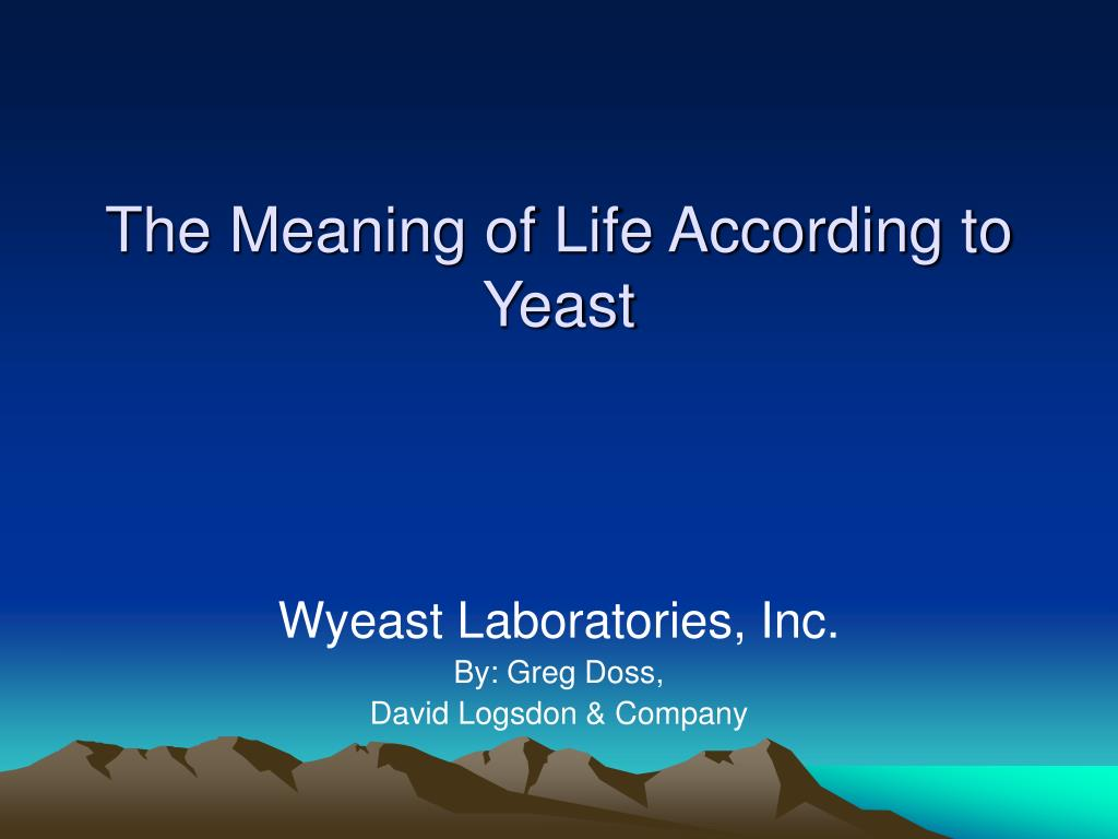 Ppt The Meaning Of Life According To Yeast Powerpoint Presentation Free Download Id 5461323