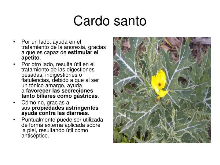 PPT - Plantas medicinales y sus propiedades. PowerPoint