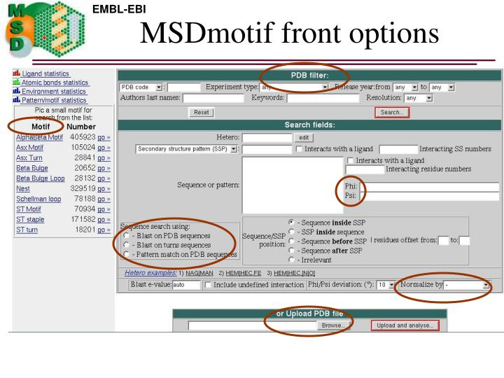 Msdmotif front options