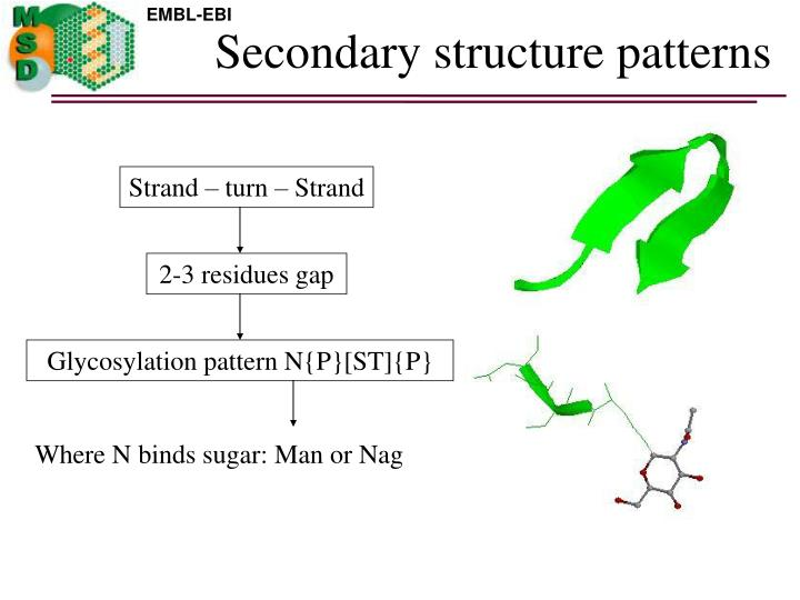 Secondary structure patterns