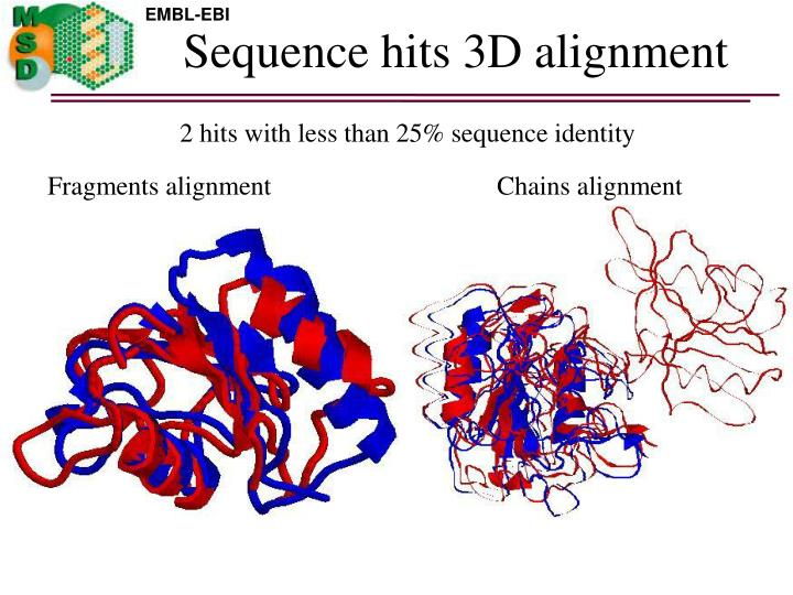 Sequence hits 3D alignment