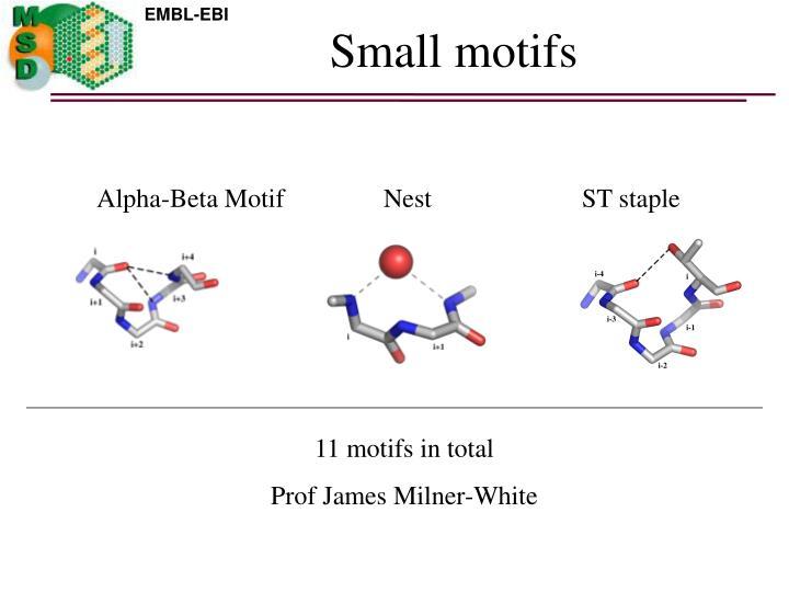 Small motifs