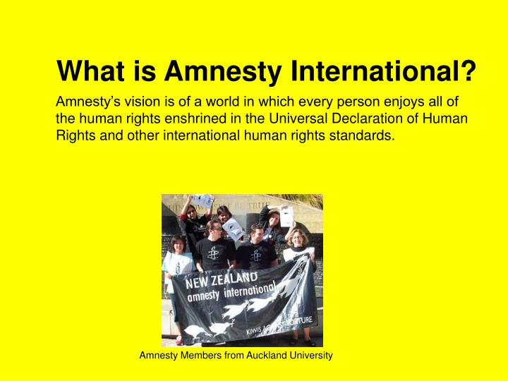 the effectiveness of amnesty international Resources amnesty international international crisis group the effectiveness of from kine 3335 at texas a&m university, corpus christi.