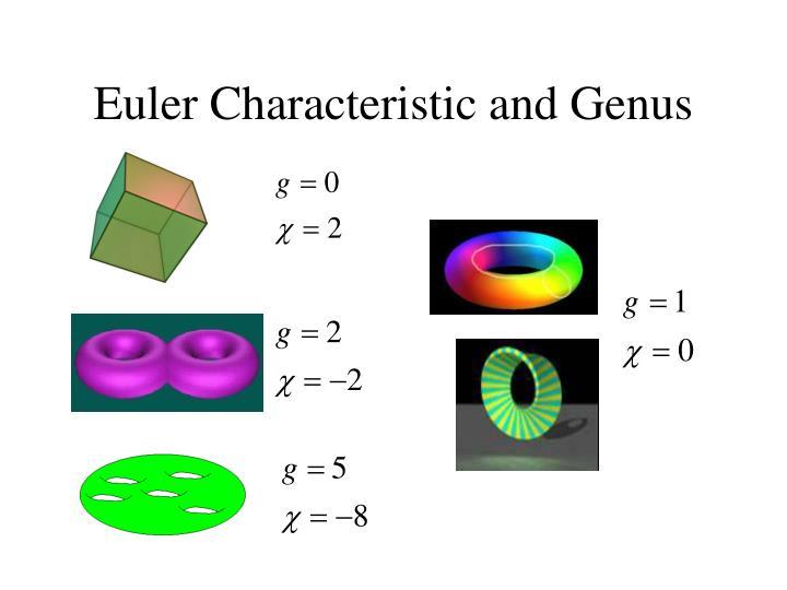 Euler Characteristic and Genus