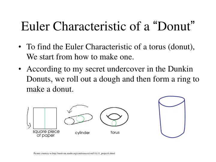 Euler Characteristic of a