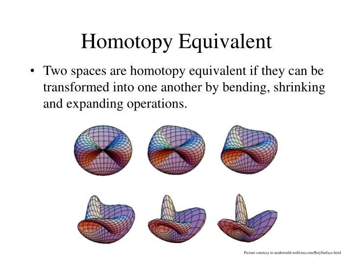Homotopy Equivalent
