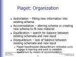 piaget organization2