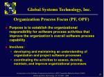 organization process focus pf opf