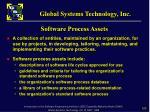 software process assets