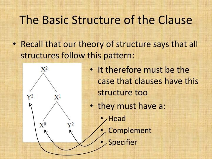 The basic structure of the clause