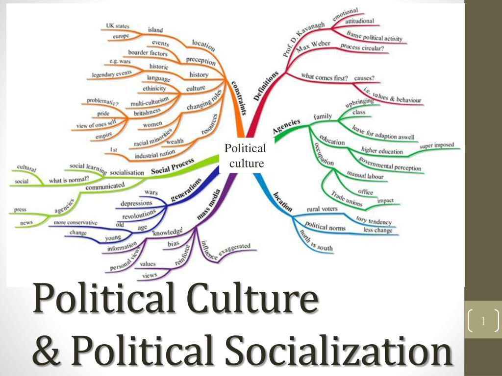 political socialization