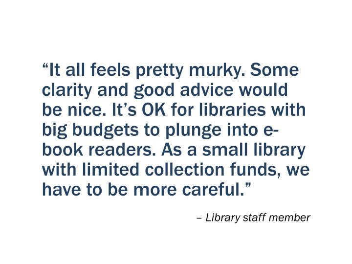 """""""It all feels pretty murky. Some clarity and good advice would be nice. It's OK for libraries with big budgets to plunge into e-book readers. As a small library with limited collection funds, we have to be more careful."""""""