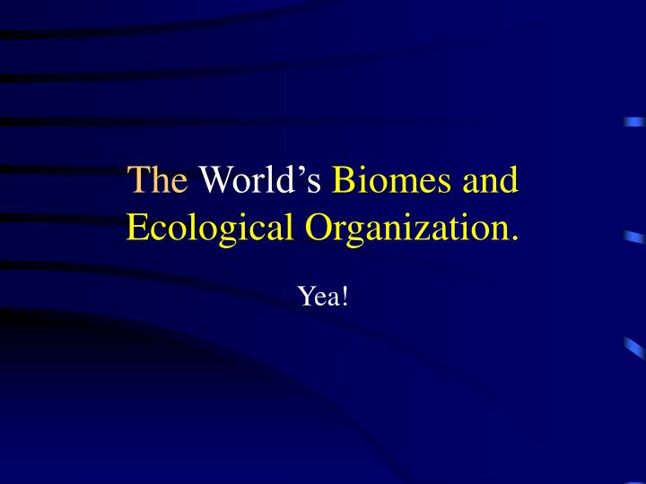 the world s biomes and ecological organization