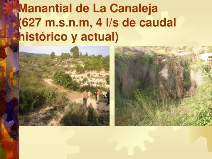 Manantial de La Canaleja
