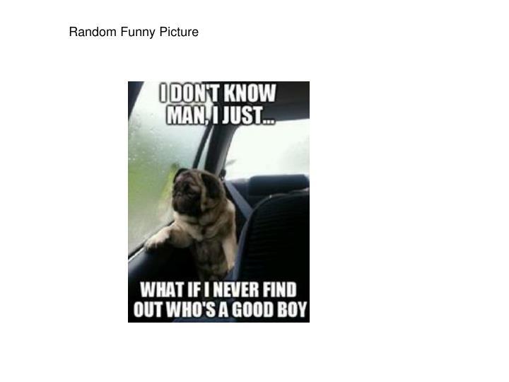 Random Funny Picture