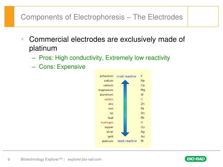 Components of Electrophoresis – The Electrodes